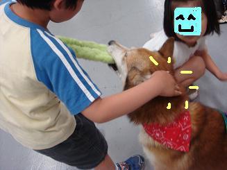 子供がスキ?.JPG