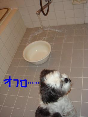 お風呂か・・・